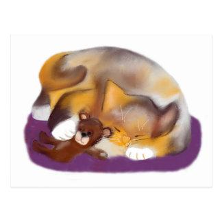 Cat Nap with Teddy Bear Postcard