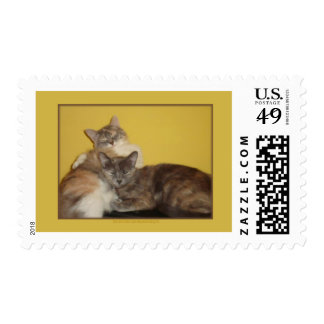 Cat Nappers Postage Stamp