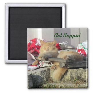Cat Nappin' Magnet