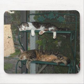 Cat Napping Mousepad