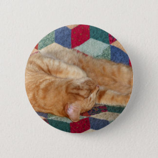 Cat Napping Pinback Button