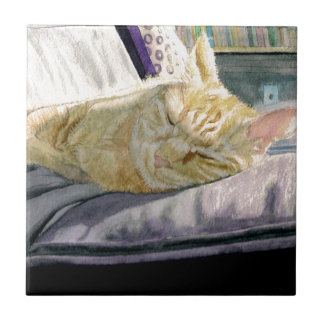 Cat Napping Small Square Tile