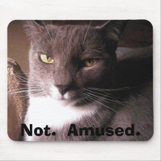 Cat:  Not Amused Mousepad