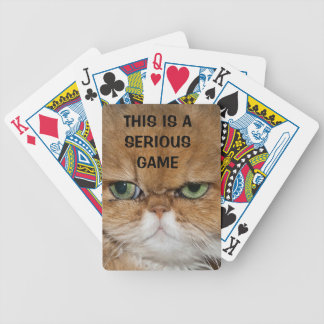 CAT NOT FRIENDLY SERIOUS CAT GREEN EYES STARE LOOK PLAYING CARDS