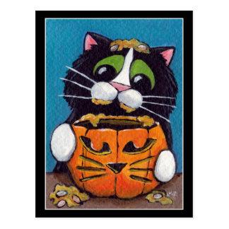 Cat O Lantern Postcard