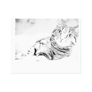 Cat of pencil design canvas print