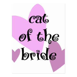 Cat of the Bride Postcard