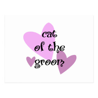 Cat of the Groom Postcard