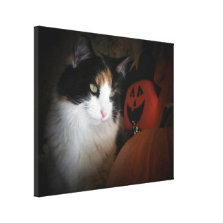 Cat O'Lantern Calico Kitty Canvas Print