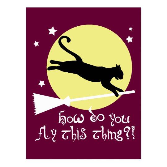 Cat on a Broomstick Postcard