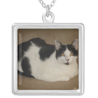 Cat On A Couch Necklace