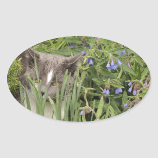 Cat on a hot bed of flowers oval sticker