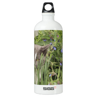 Cat on a hot bed of flowers water bottle