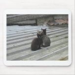 Cat on a Hot Tin Roof Mousepads
