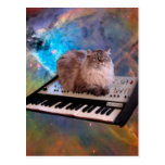 Cat on a Keyboard in Space Postcard