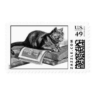 Cat on Books Postage