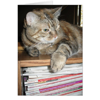Cat on Bookshelf Card