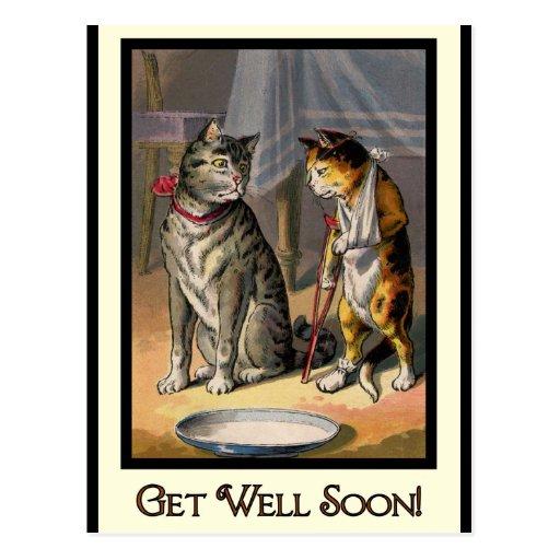 Cat on Crutches Postcard