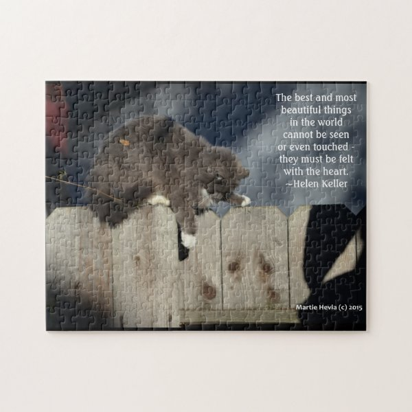 Cat on Fence #9 (Personalize Quote)