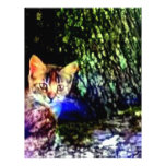 Cat on Oak Roots Letterhead
