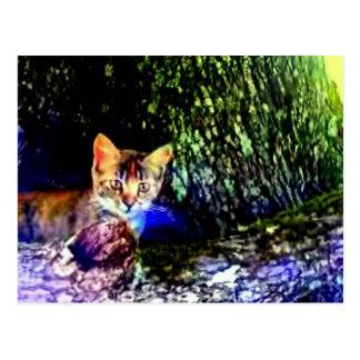 Cat on Oak Roots Postcard