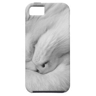 Cat on Phone No Text iPhone SE/5/5s Case