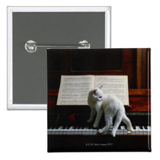 Cat on piano pinback button