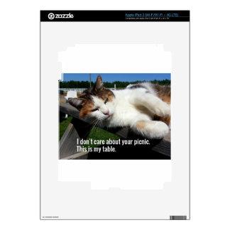 Cat On Picnic Table iPad 3 Skin