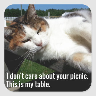 Cat On Picnic Table Square Sticker
