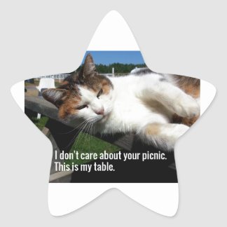 Cat On Picnic Table Star Sticker
