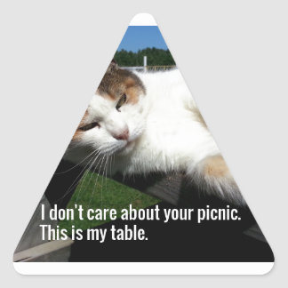 Cat On Picnic Table Triangle Sticker