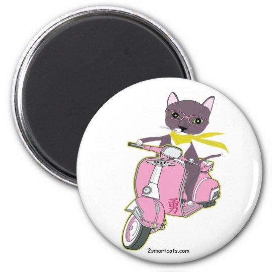 Cat On Pink   Magnet