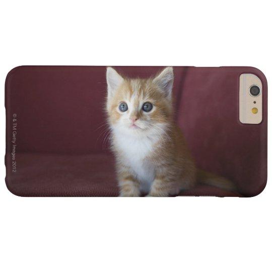 Cat on sofa Case-Mate blackberry case