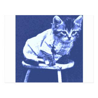 Cat on stool wearing a sweater postcard