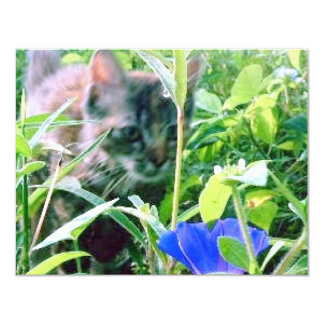 Cat on the Prowl in the Garden Card