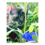 Cat on the Prowl in the Garden Personalized Letterhead