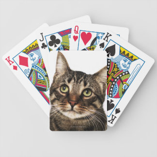 Cat on white background 2 bicycle playing cards