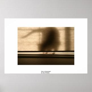 Cat on Windowsill Poster