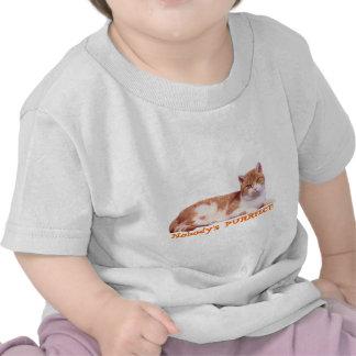 Cat Orange & White Todler T-Shirt