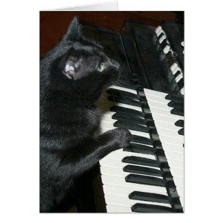 Cat organ recital card