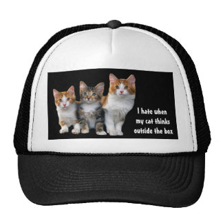 Cat Outside The Box Hat
