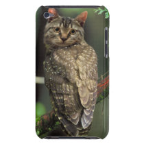 Cat Owl Barely There iPod Cover