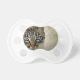 cat pacifier