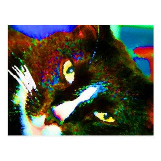 cat painting tuxedo colorful kitty animal design postcard