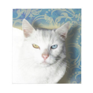Cat - Patrick the White Cat Memo Notepads