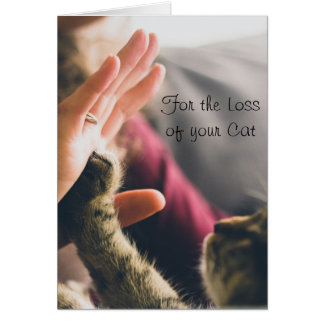 Cat Paw Giving High-five Card