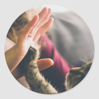 Cat Paw Giving High-five Classic Round Sticker