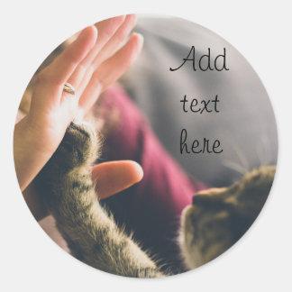 Cat Paw High-five Classic Round Sticker