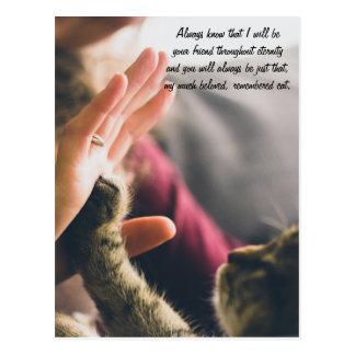 Cat Paw High-five Postcard