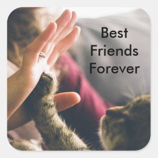 Cat Paw High-five Square Sticker